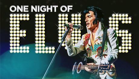 Пригласите Lee Memphis King с шоу One Night of Elvis
